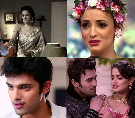 Indian TV : 5 Times When Fans Took Charge Of Twitter For Their Favourite Celebs In 2015!