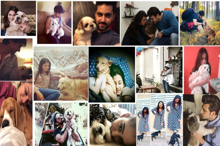 IN PICS : TV Celebs Showered With Some 'PUPPY LOVE'!