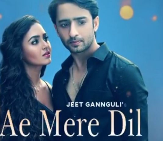 Shaheer Sheikh And Tejasswi Prakash In Ae Mere Dil